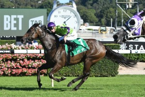Global Glamour Makes All In Light Fingers Stakes 2017