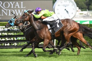 Nakeeta Jane, above in green and purple colours, swoops down the outside to win the 2019 Surround Stakes at Randwick. Photo by Steve Hart.