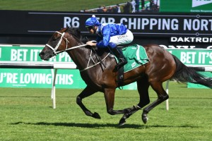 Winx, above, is the odds on favourite for the 2018 Cox Plate at The Valley. Photo by Steve Hart.