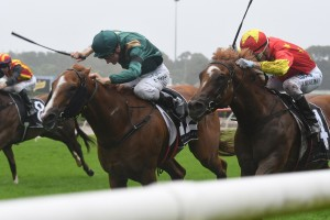 Two Golden Slipper Stakes Hopes for Snowden Run Todman Quinella