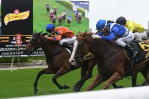 Rocket Commander kicked late to win the Group 3 Wenona Girl Quality this afternoon. Photo: Steve Hart