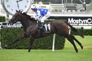 Villami, above, scored an all the way win in the Fireball Stakes at Randwick. Photo by Steve Hart.