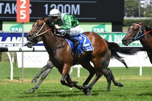 Estijaab, above, wins the Reisling Stakes at Randwick. Photo by Steve Hart.