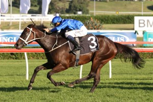 Winx is our tip to win Saturday's 2016 Warwick Stakes at Royal Randwick. Photo: Ultimate Racing Photos