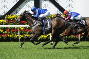 Furnaces displayed a keen turn of foot in the final straight to win the Group 3 Kindergarten Stakes. Photo: Steve Hart