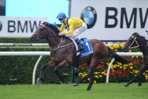 Pride Of Dubai will likely target the Group 1 Golden Rose (1400m) upon resuming in spring. Photo: Steve Hart