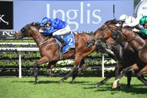 Microphone, above, storms home along the inside to win the 2019 Inglis Sires' at Randwick. Photo by Steve Hart.