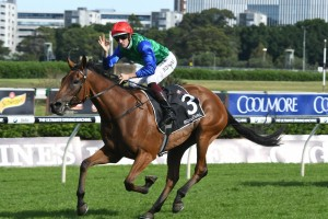 Global Glamour To Myer Classic After Tristarc Stakes Win