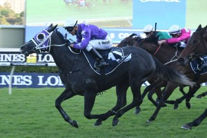 Foxplay stormed home to win this afternoon's Group 1 Queen Of The Turf Stakes at Royal Randwick. Photo: Steve Hart