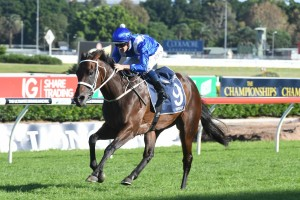 Winx is set to extend her winning streak in the 2017 Warwick Stakes. Photo by: Steve Hart