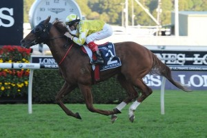 Criterion has been confirmed in the 2015 Caulfield Stakes final field. Photo: Steve Hart