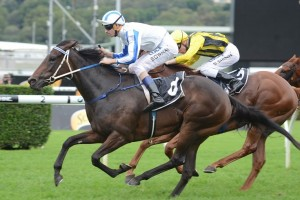Pasadena Girl finished down the centre of the track to win the Champagne Stakes at Randwick. Photo by Steve Hart.