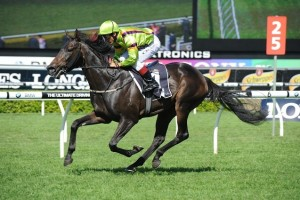 Veuvelicious has been set for the 2014 Crown Oaks