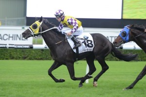 Sacred Falls is chasing her first win this preparation in the Crystal Mile at Moonee Valley on Saturday.