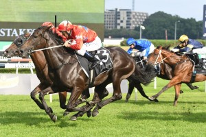 Seabrook, above, wins the Champagne Stakes at Randwick. Photo by Steve Hart.