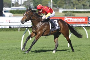 Moir Stakes Next for McEwen Stakes Winner Russian Revolution
