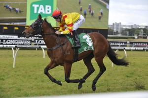 Thronum is our tip to win Saturday's 2016 Up And Coming Stakes at Randwick. Photo: Steve Hart