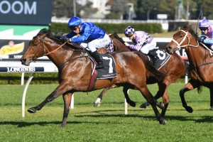 Roheryn, above, was an impressive winner at Randwick. Photo by Steve Hart.