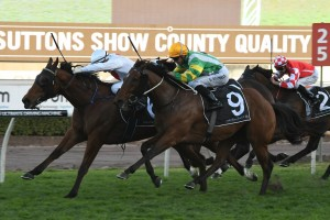 Deploy (pictured winning at Randwick) was far too good in this afternoon's Group 2 Theo Marks Stakes. Photo: Steve Hart