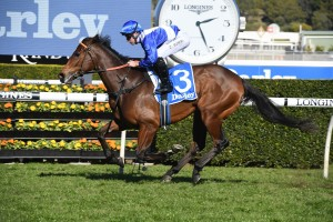 Libertini, above, is among the nominations for the 2019 Flight Stakes at Randwick. Photo by Steve Hart.