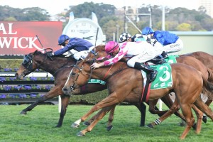 Golden Rose Next for Furious Stakes Winner Formality