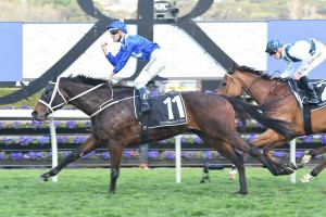 Winx finished over the top of Red Excitement to win the Chelmsford Stakes. Photo by: Steve Hart