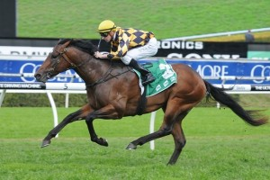 Panzer Division will carry 6kgs less than his closest rivals in the George Main Stakes