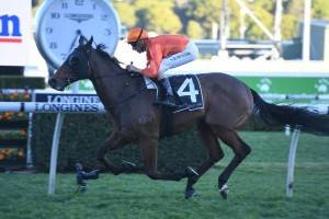 Dreamforce, above, raced into Epsom Handicap contention with an all the way win in the Tramway Stakes at Randwick. Photo by Steve Hart.