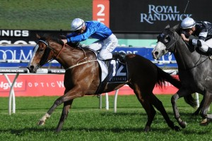 Pearls will step up to the Group 1 Flight Stakes after winning the Tea Rose Stakes at Randwick. Photo by Steve Hart.