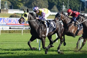 Sacred Falls is one of four horses in contention for the Cox Plate for trainer Chris Waller.