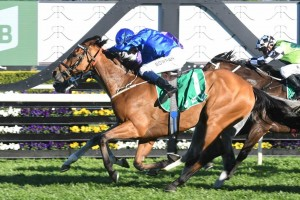 Hartnell, above, scored a tough win in the 2018 Epsom Handicap at Randwick. Photo by Steve Hart.