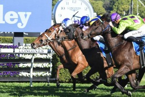 Oohood, in the middle with the blue cap, gets the judge's decision in the Flight Stakes at Randwick. Photo by Steve Hart.
