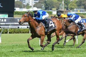 2016 Magic Night Stakes Tips and Betting Preview
