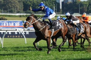 Winx produced a huge turn of foot to take out the 2015 Epsom Handicap. Photo: Steve Hart