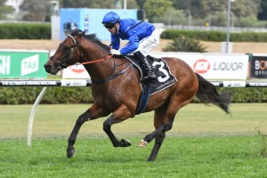 Victoria Derby Day 2017 Tips: Flemington Betting Selections