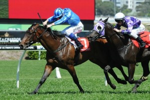 Giuliani (outside) has been confirmed for the 2014 TL Baillieu Handicap