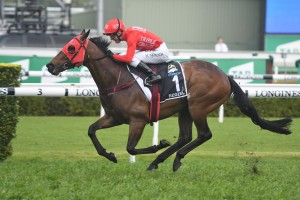 Redzel, above winning the 2018 Everest, scored an all the way win in a 1000m Rosehill barrier trial for Kerrin McEvoy. Photo by Steve Hart.
