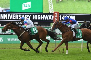 After All That, No 6, wins the Highway at Randwick. Photo by Steve Hart.