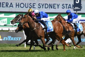 Deprive.above, in blue colours with white cap, kept his perfect Randwick record intact with a win in the Sydney Stakes. Photo by Steve Hart.