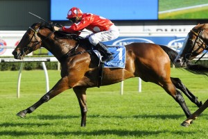 2016 BRC Sprint Tips and Betting Preview