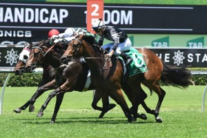 2018 Hawkesbury Guineas Field & Odds: Victorem Favourite