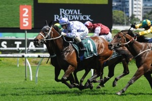 Acapela will drop back in classic when she contests the Dover Handicap at Flemington this weekend.