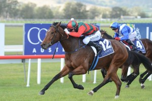 In A Wink scores an upset win in the 2015 Listed Denise's Joy Stakes at Scone