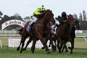 Jurasound (centre) could get her black-type racing debut in the Angus Armanasco Stakes.
