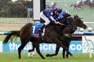 Fontiton could attempt the Blue Diamond-Golden Slipper double after an impressive jumpout on Tuesday.