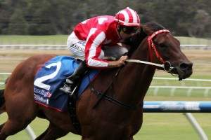 Shamal Wind is at her best condition ahead of the Oakleigh Plate.