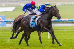Reigning champion Girl Guide has been confirmed in the 2015 Cockram Stakes final field. Photo: Race Horse Photos Australia