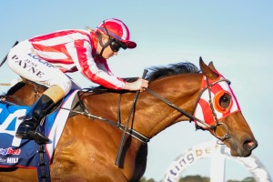 Jessica Payne (pictured here with Hosting) will ride Petite Diablesse in the Building Engineering Handicap on Saturday.