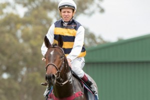 Kerrin McEvoy will ride her five different trainers at Rosehill this Saturday, ahead of his first autumn as a freelance jockey.