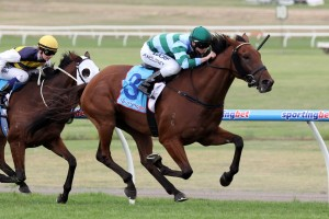 Angola has been included in nominations for the 2014 Ipswich Cup